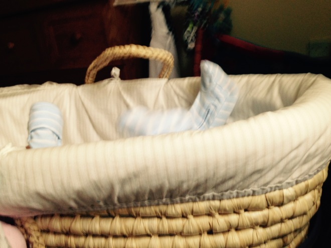 Popple in her moses basket