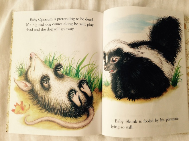 Page from Baby Animals