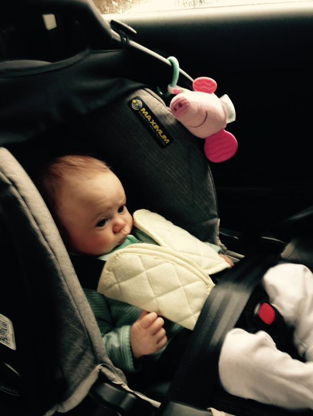 Popple in a carseat