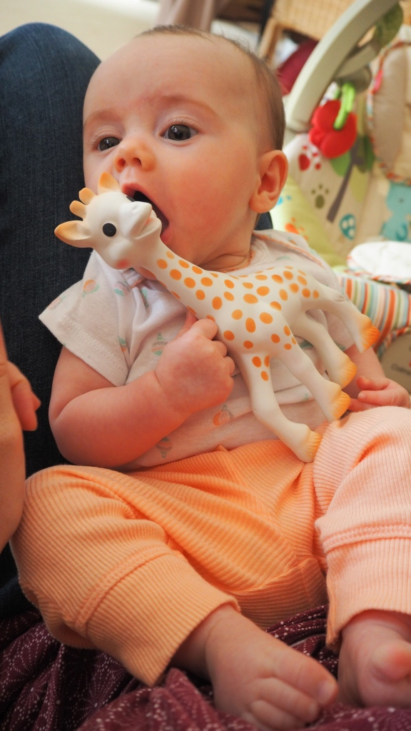 The Popple eating Sophie the Giraffe