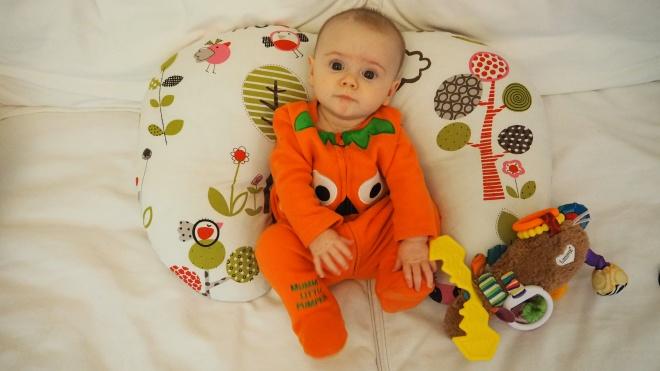 Popple as a pumpkin
