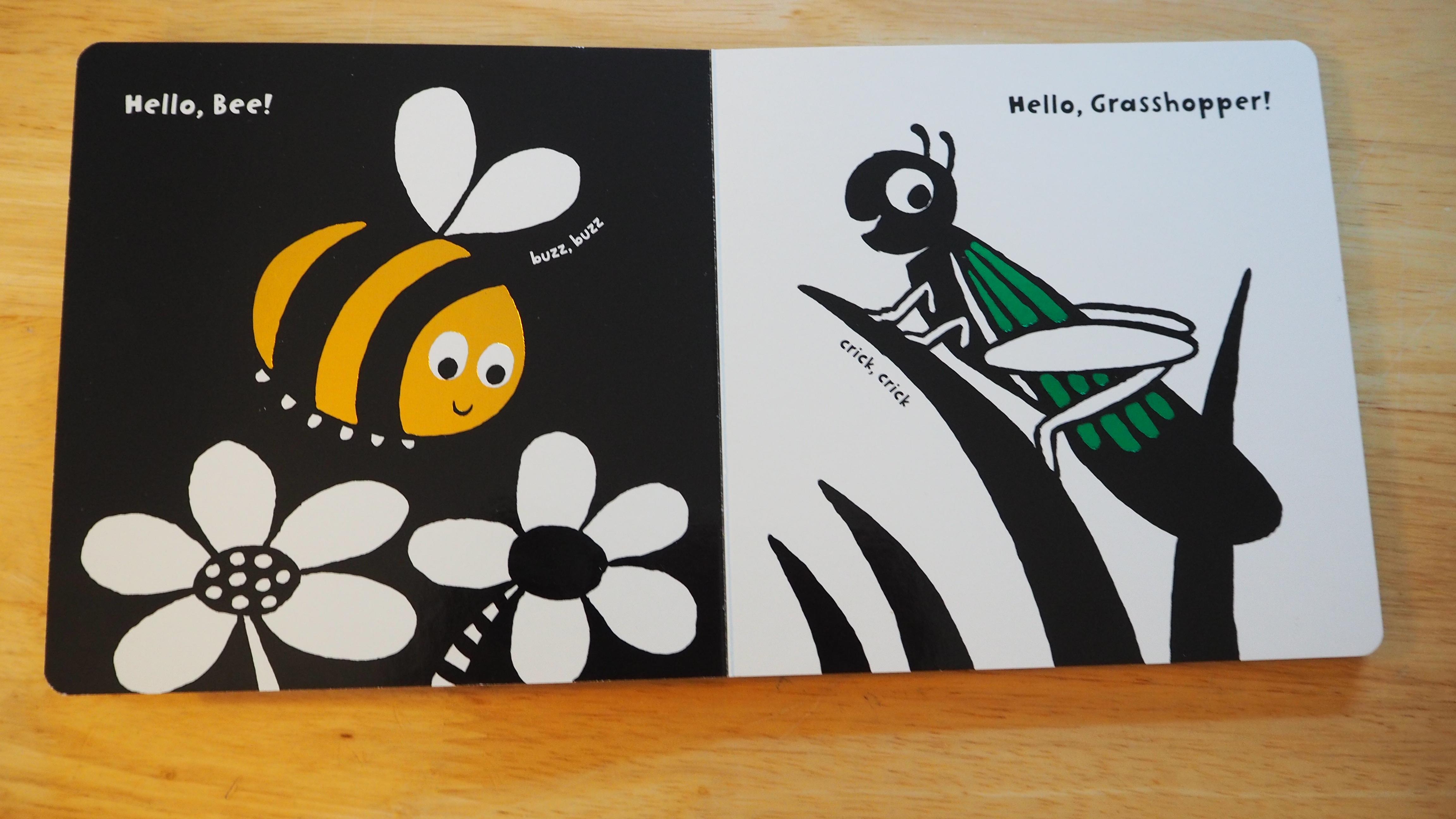 Hello, bee! Hello, grasshopper!