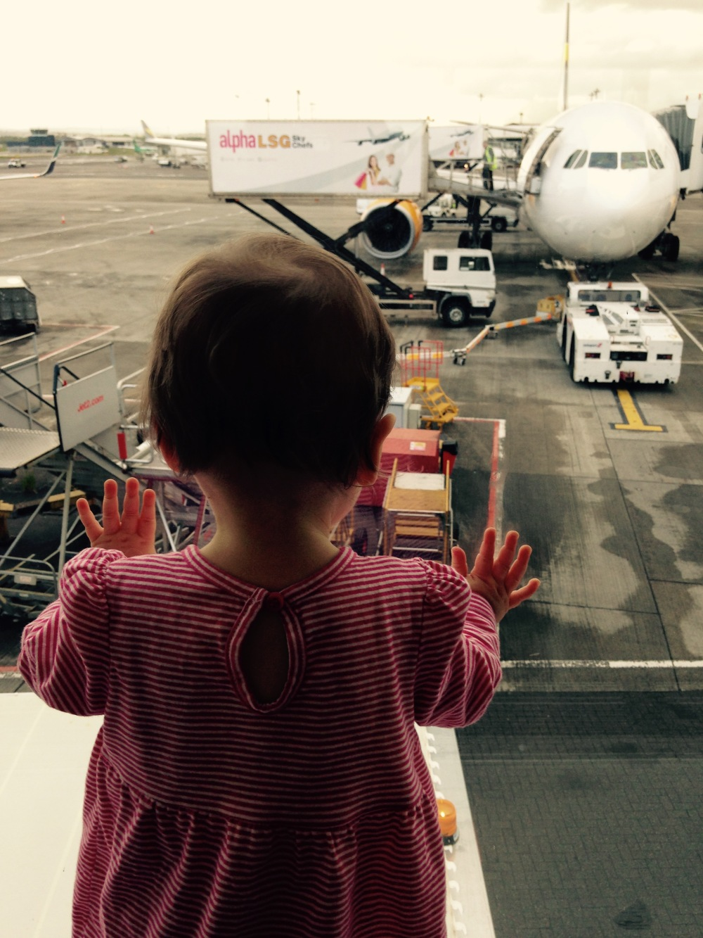 The Popple looking out the window at the airport